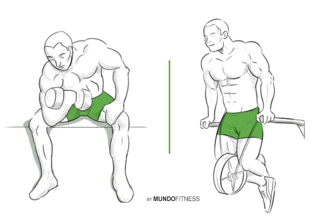 Ejercicios para brazos fuertes y definidos