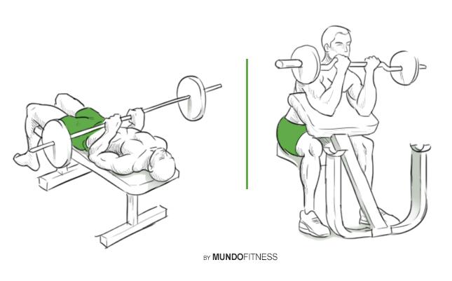 Ejercicios para fortalecer bíceps y triceps