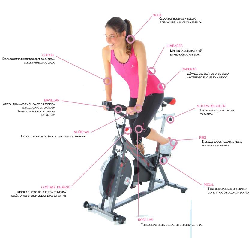 C mo trabajar la zona abdominal en spinning for Clases de spinning