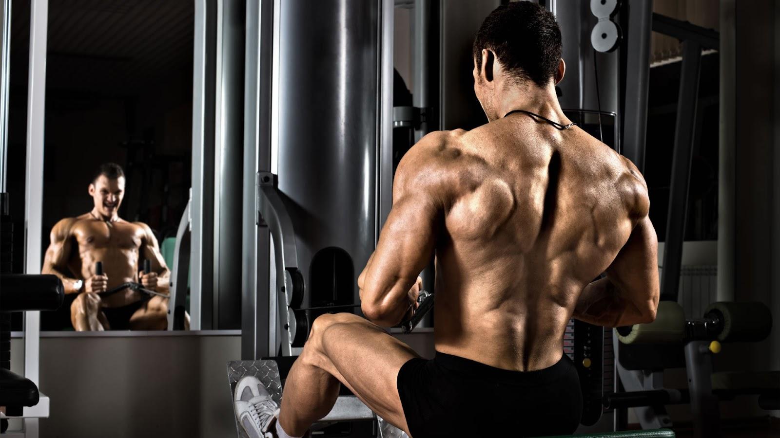 maximiza tu espalda