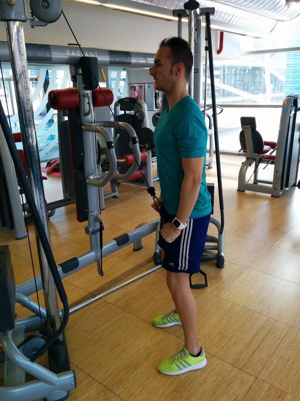 Extensión de tríceps polea