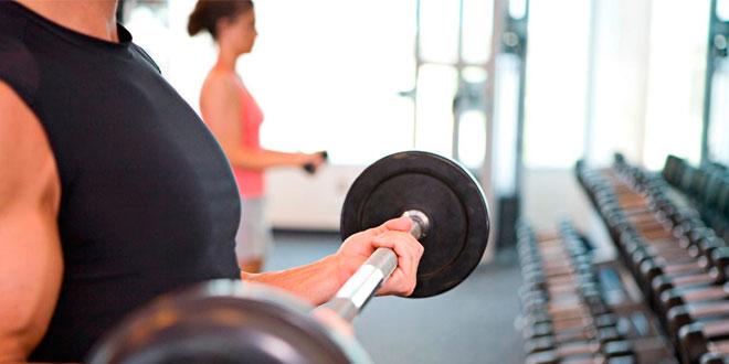 crear musculo