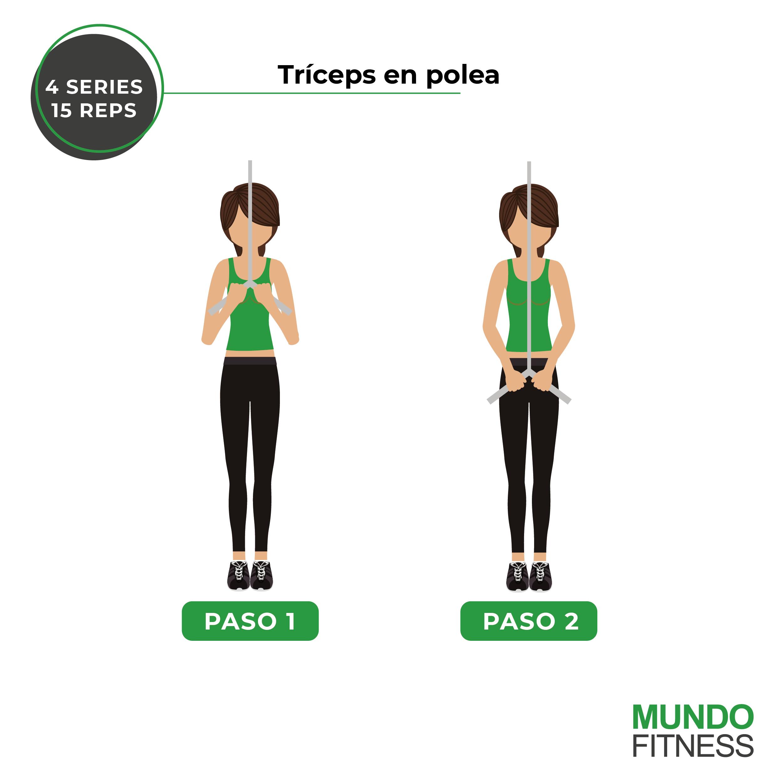 ejercicios para brazos de mujeres tríceps en polea