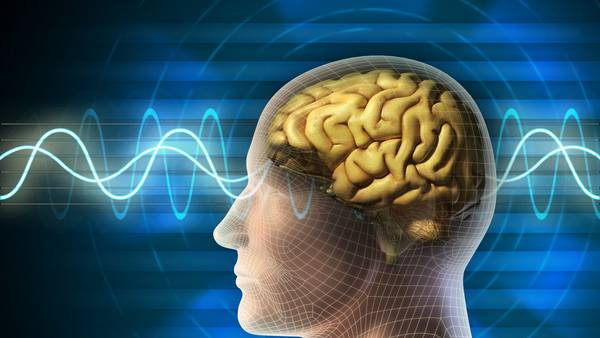 capacidad cerebral
