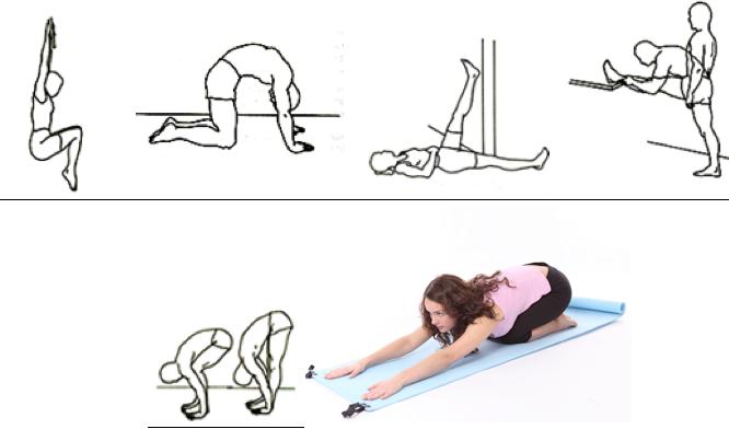 Estiramientos para la espalda y mejora de la elasticidad de tus isquiotibiales.