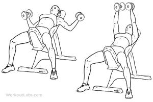 ejercicios-de-pecho-con-mancuernas-aperturas-inclinado