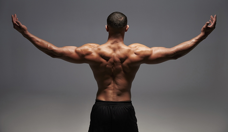 maximizar ejercicios de espalda