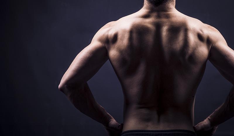 dale volumen a tu espalda
