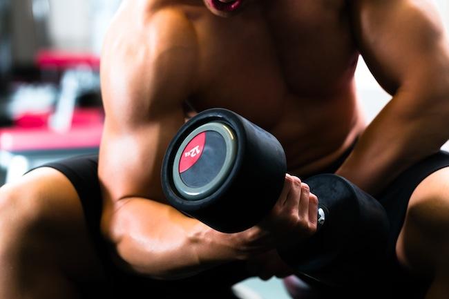 tipos de musculacion