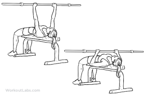 bench press plano barra