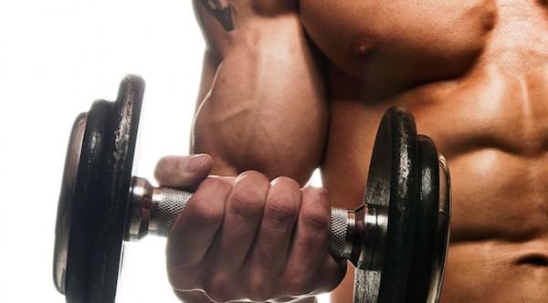 big biceps now