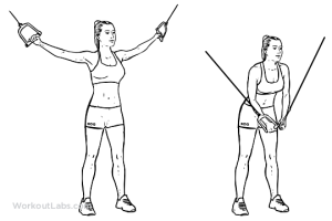 ejercicios-de-pecho-con-mancuernas-cruces-poleas