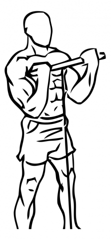 curl biceps en polea