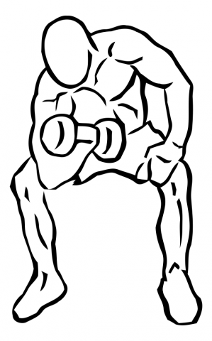 curl concentrado biceps