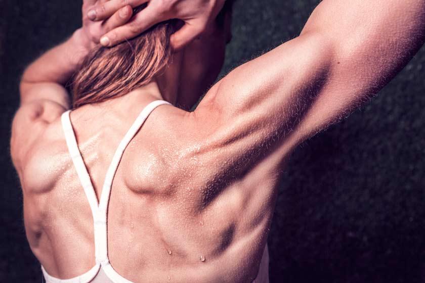 maquina-remo-que-musculos-trabaja-trapecio