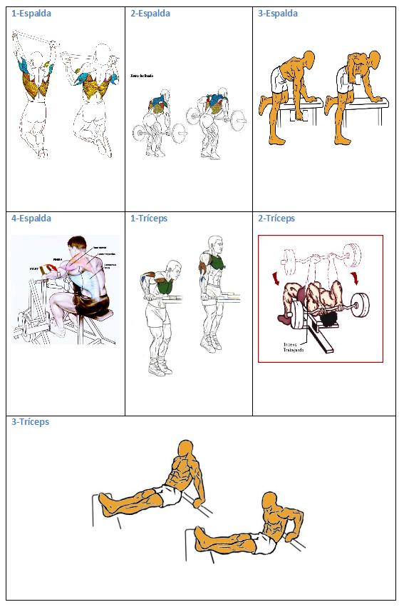 ejercicio jueves