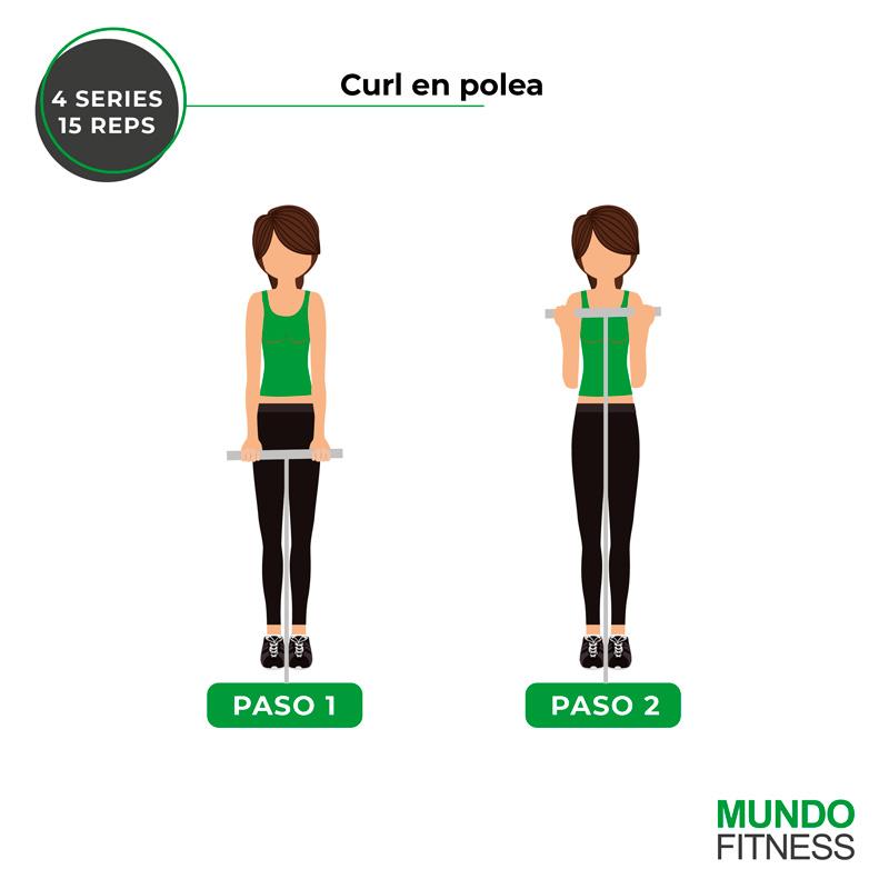 ejercicios para brazos de mujeres curl en polea