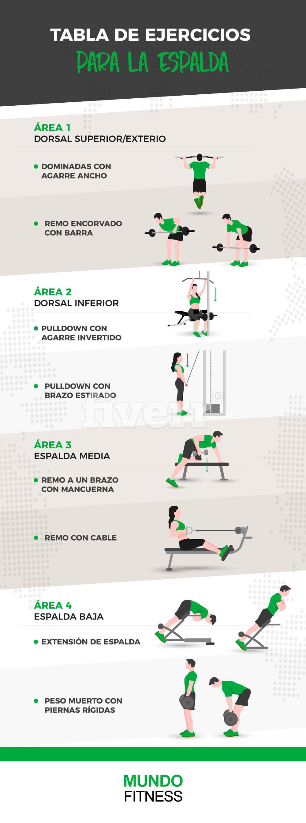 ejercicios-para-la-espalda-infografia