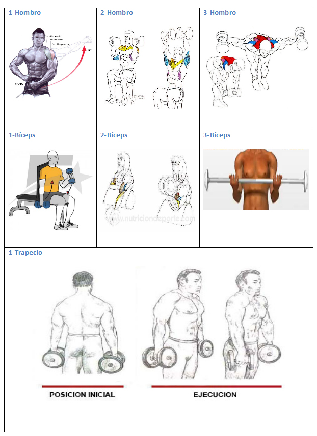 ejercicios lunes1