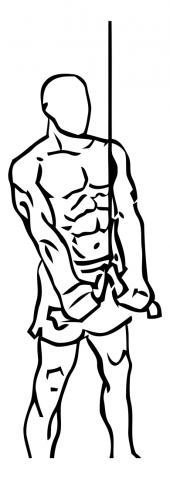 extension de triceps