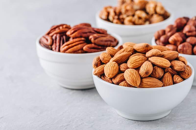 snack-frutos-secos