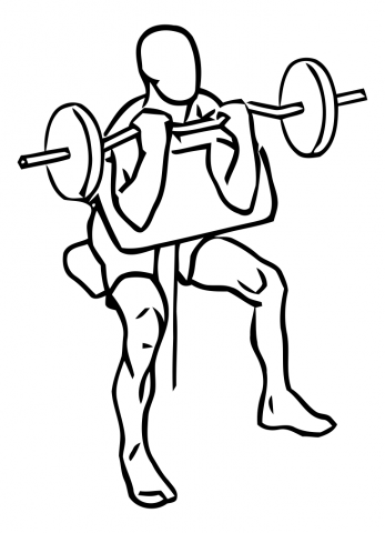 biceps banco scott