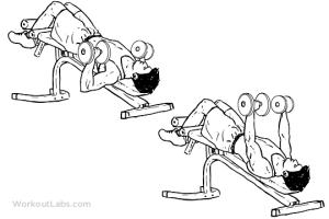 ejercicios-de-pecho-con-mancuernas-press-declinada